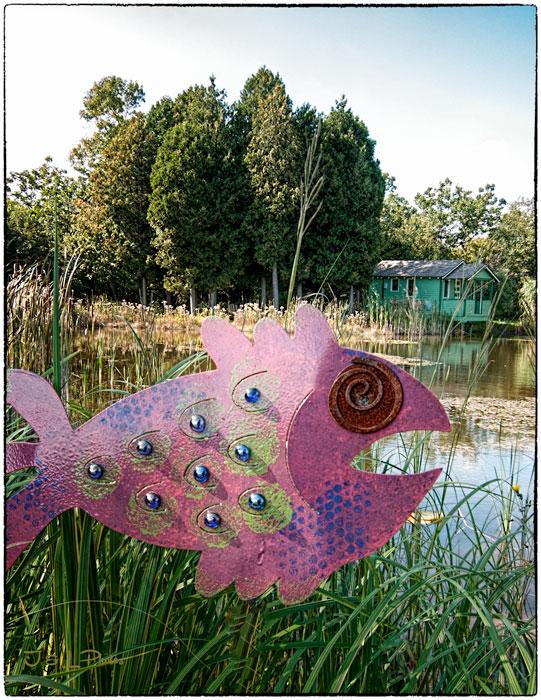 web-fish